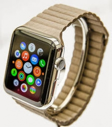 Apple has security concerns about Watch