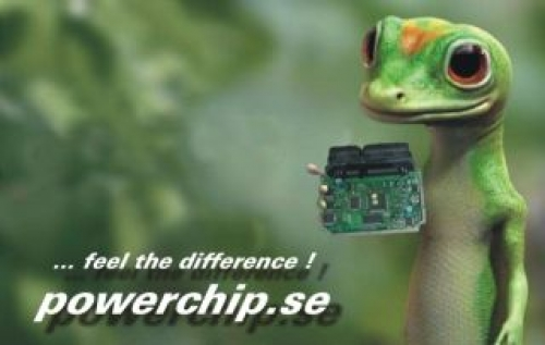 Powerchip builds Chinese fab