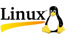 Why Linux is still not ready for desktop