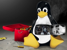 Nvidia fixes old Linux bug