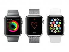 Developers can't do anything with the iWatch