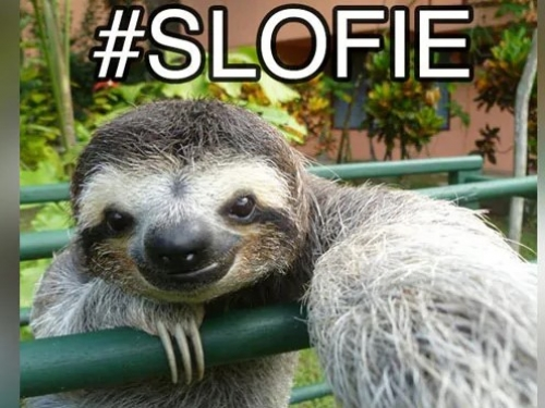 Apple claims to have invented Slofies