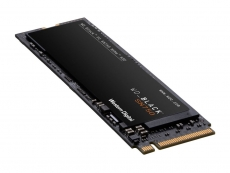 Western Digital unveils new SN750 series NVMe SSDs
